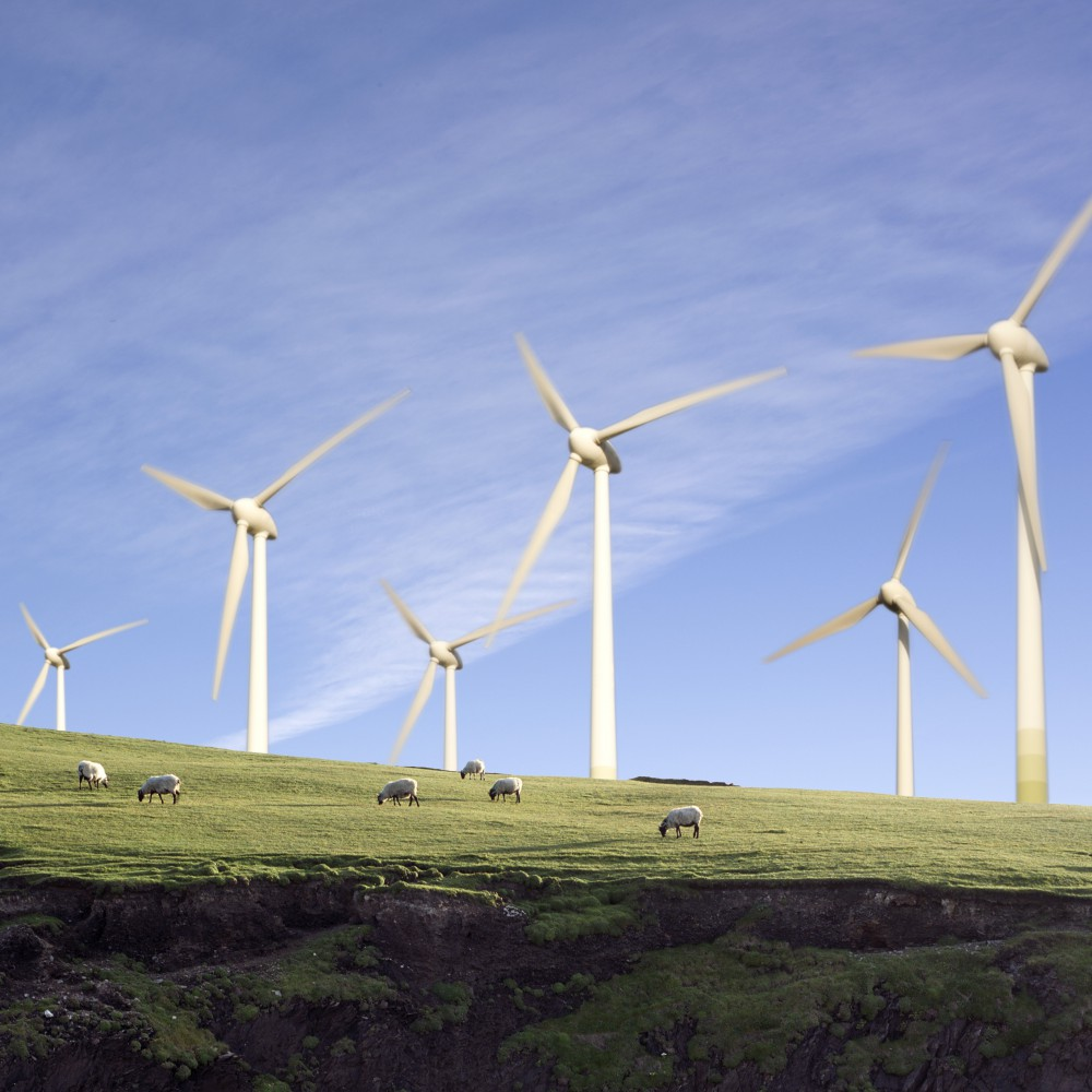 Sheep grazing in Front of Wind Turbines --- Image by © Lilian Henglein/cultura/Corbis